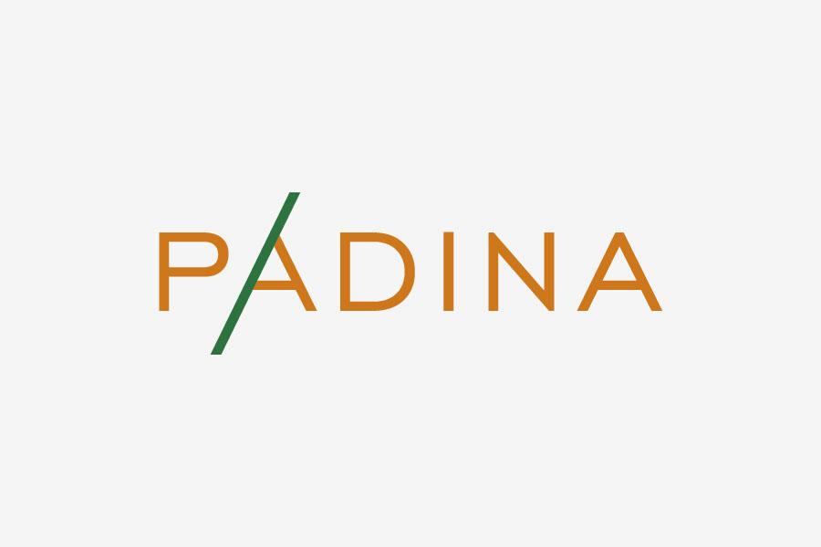 dizajn vizualnog identiteta padina logotip - shift agencija