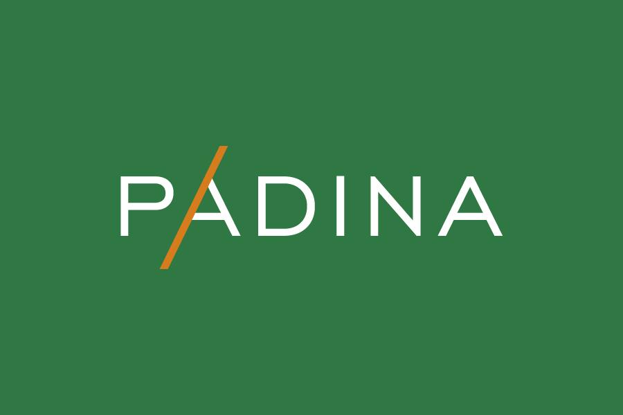 dizajn vizualnog identiteta padina logotip