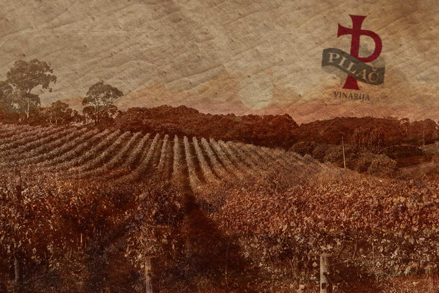 vizualni identitet vinarija pilač