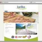 shift.ba grafički dizajn, karliko web stranica