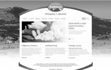 shift.ba grafički dizajn web stranice