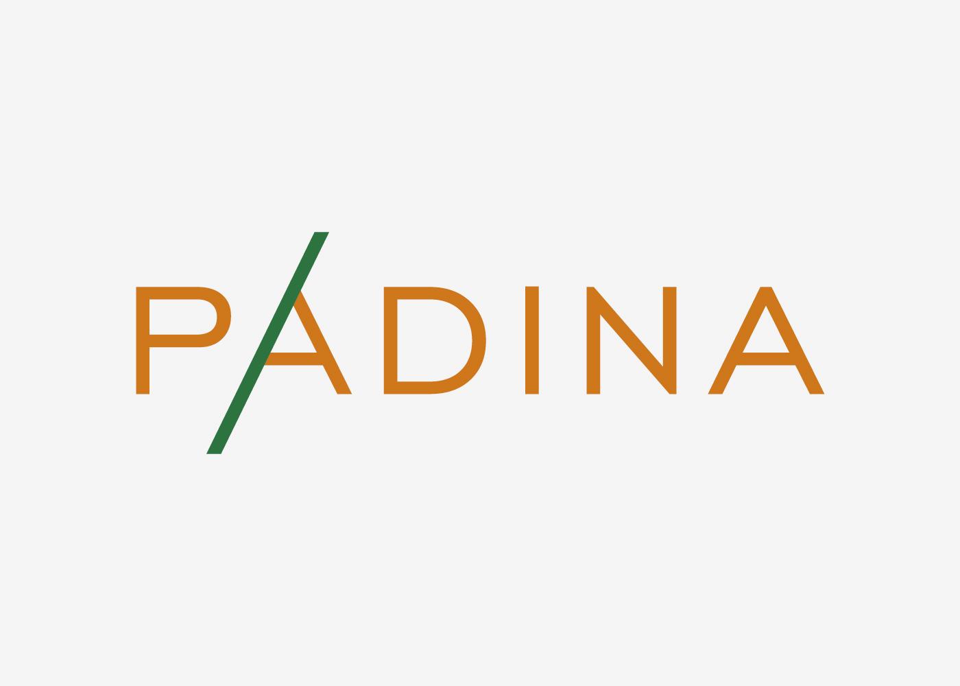 Vizualni identitet i web trgovina za distributera alata Padina